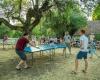 camping ping pong dordogne